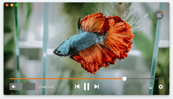 Best video players for Mac in 2019