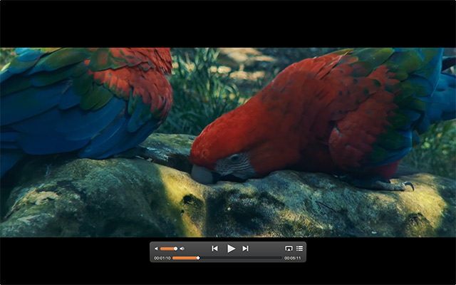 Advanced video playback
